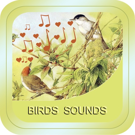 Bird Soundx iOS App