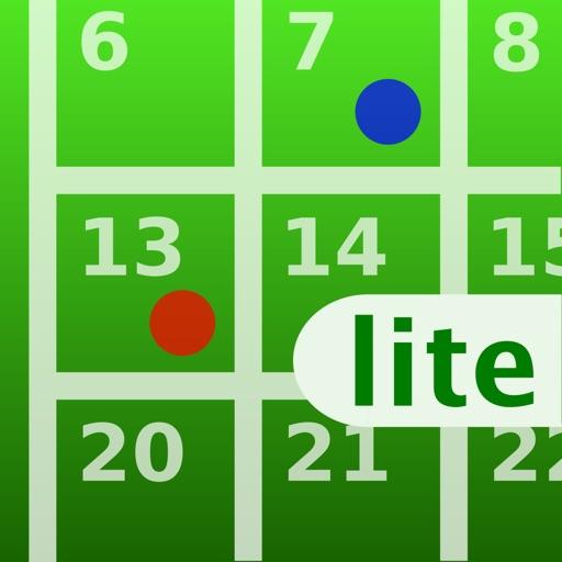 iLogger Lite