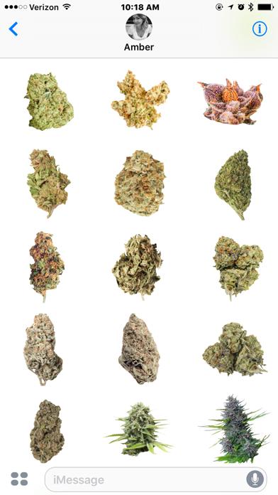 点击获取Marijuana Cannabis