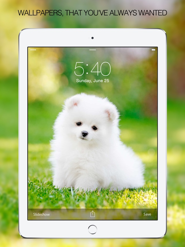 Puppy Wallpapers Cute Pictures Images On The App Store