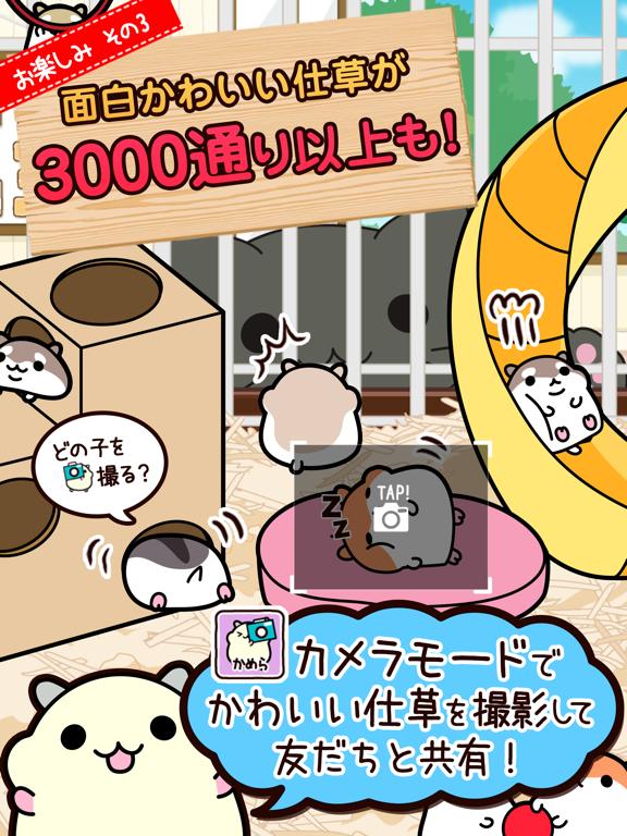 ハムスターコレクション◆基本無料の育成ゲーム!ねことハムのんびりペットライフのおすすめ画像5
