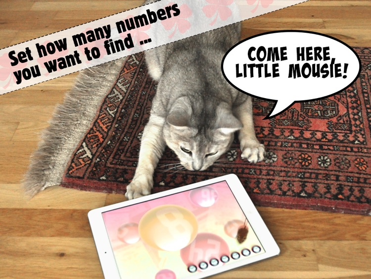 Lucky Cat Lottery Numbers - Catch Game For Cats screenshot-0