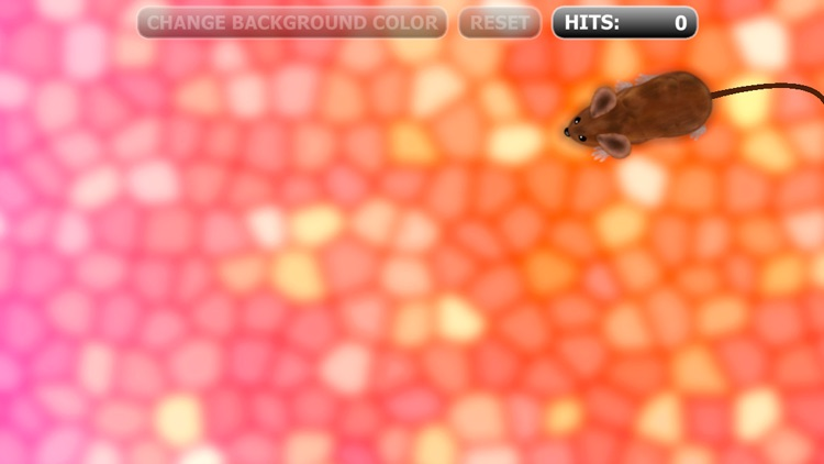 Catch the Mouse Cat Game for iPhone screenshot-3
