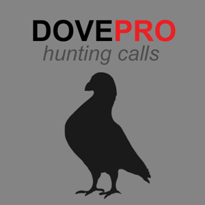 REAL Dove Calls and Dove Sounds for Bird Hunting! app