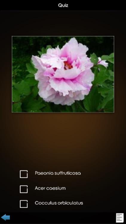 Medicinal Plants Encyclopedia screenshot-4