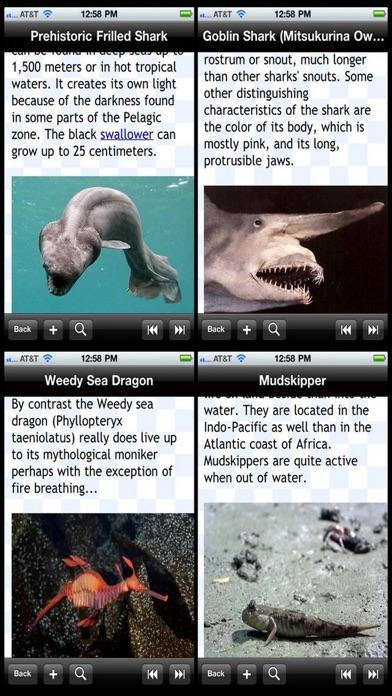 Weirdest Sea Creatures review screenshots