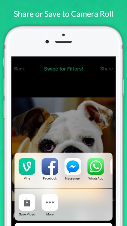 Talking Pets - Make your Cats and Dogs Speak screenshot-3