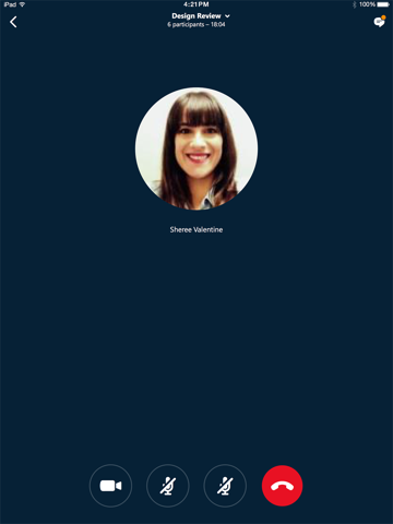 Skype for Business screenshot 2