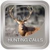 Hunting Calls: All in One