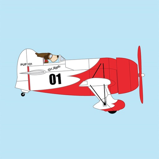 Fly Plane 3D