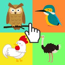 Activities of Puzzle Bird for Kids