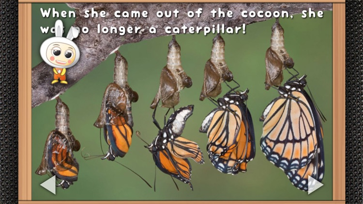 Pepa and the Butterfly - Read & Learn Storybook screenshot-3