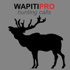 Activities of REAL Wapiti Calls for Hunting + BLUETOOTH COMPATIBLE