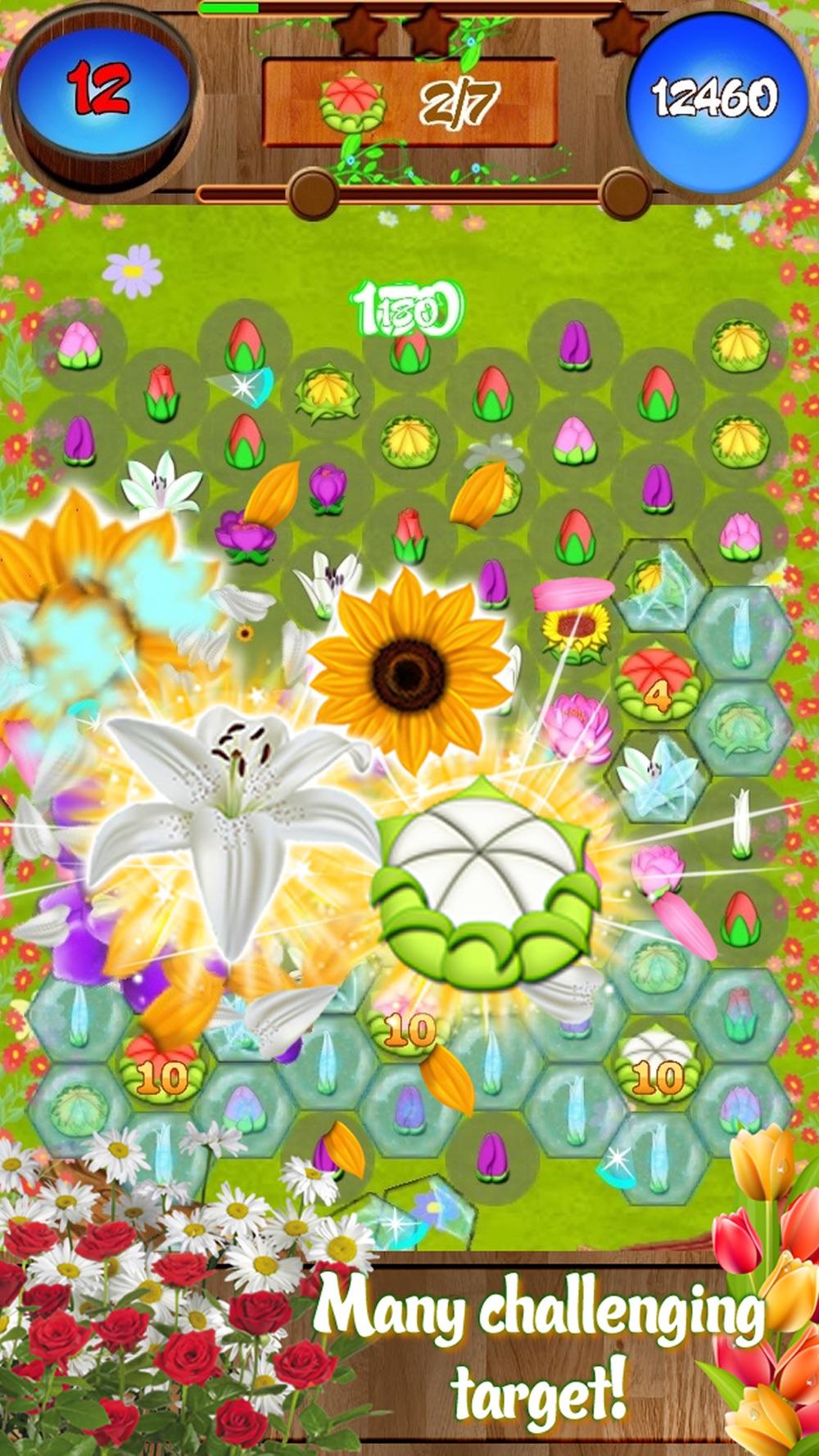 Flower Forest Blast