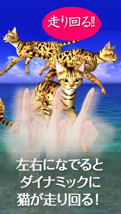 猫っとベンガルがネコっ可愛くなでまくり遊べる無料ペットねこアプリ!紹介画像2