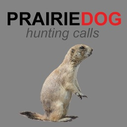 Prairie Dog Calls & Sounds for Hunting