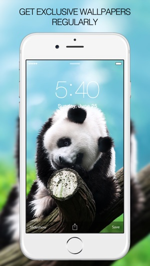 Panda Wallpapers Pictures Images On The App Store