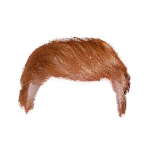 ElectionMoji - Trump Hair Stickers Pack