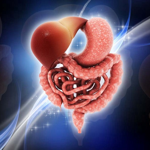 Leaky Gut Guide-Symptoms and Digestive System