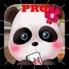 熊猫师傅专业