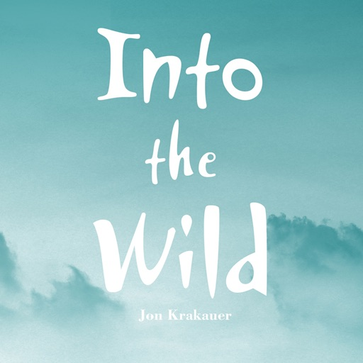 Practical Guide for Into the Wild:Key Insights