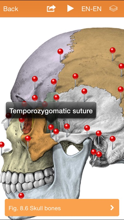 Sobotta Anatomy screenshot-1