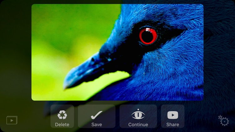Dideye Pro - 4k video clips camera screenshot-3