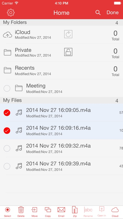 Recorder Pro: Professional Voice Recorder screenshot-3
