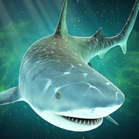Codes for Shark in Beach Simulator: Chaos in Paradise Island Hack