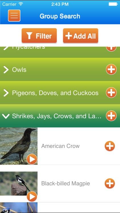 iKnowBirdSongs screenshot-2