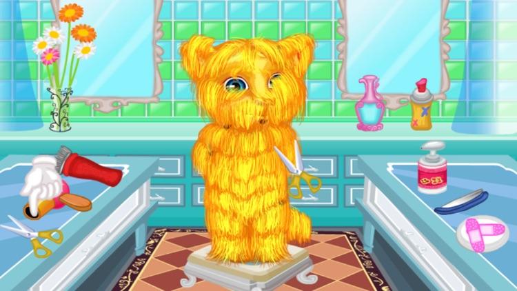 猫猫修理毛发洗澡游戏 之 金杰猫