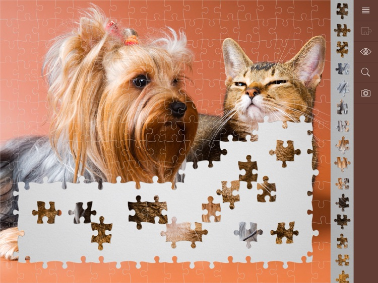 My Jigsaw Puzzles screenshot-4