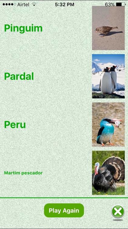Flashcards Portuguese Lesson screenshot-3