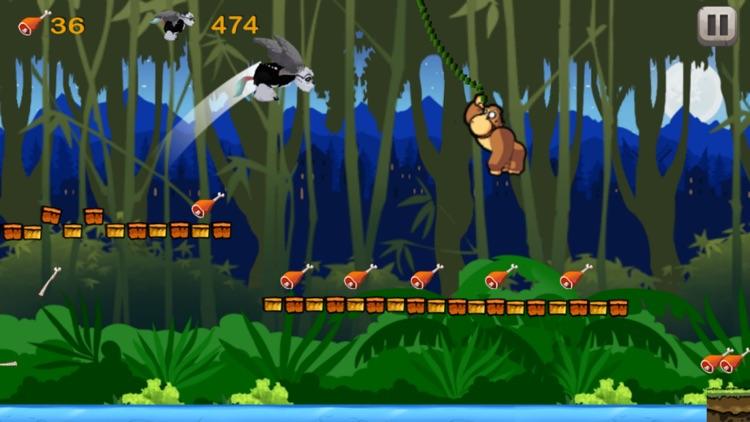 Superfly Rainforest Animals In Monkey King Jungle screenshot-3