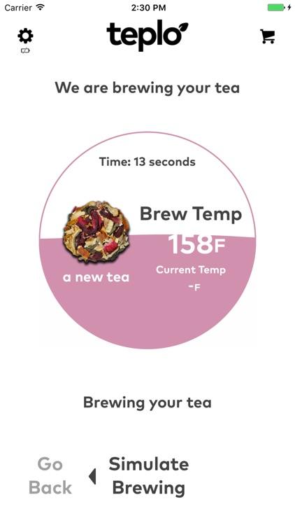 Teplo : 1st Smart Portable Tea Maker(Bottle)