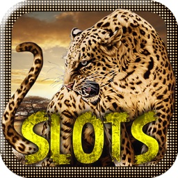 Leopard Slot Machines – Big Win Casino