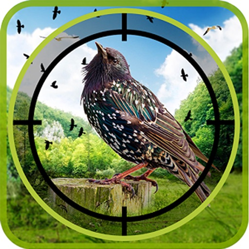Hunt The Birds : A Real Shooting Adventure