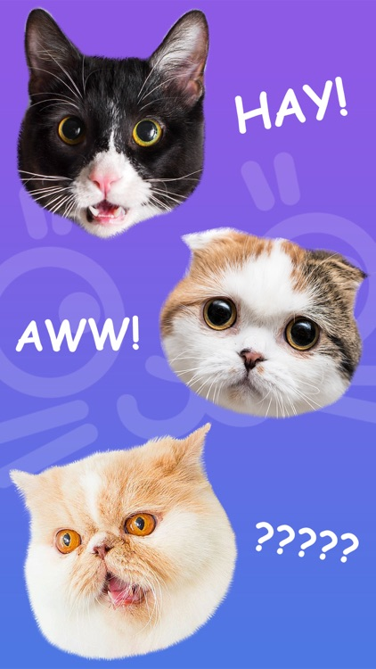 Cat Stamp! Cute Stickers of Cats screenshot-1