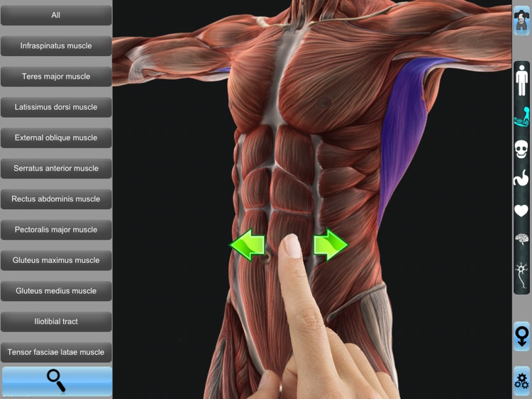 Anatomy 3D for iPad