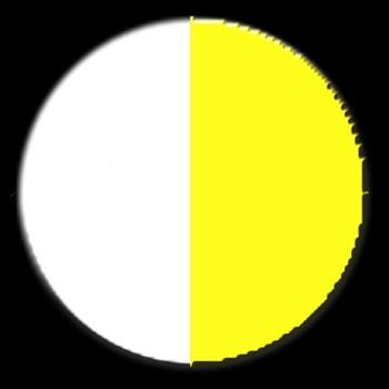 Circle Chaser