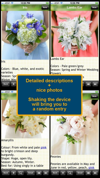 120 wedding flower list app details reviews ratings lifestyle
