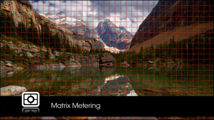 Nikon D5300 from QuickPro screenshot-4