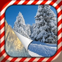 Winter Wallpapers & Backgrounds