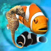 Codes for Fish Farm Hack