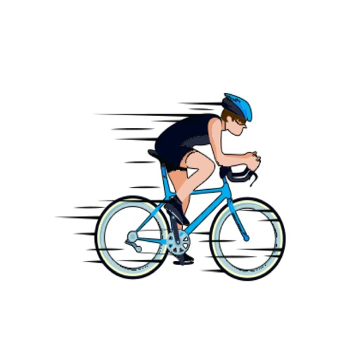 Bicycle Action Stickers