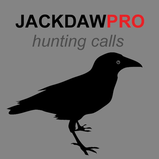 Jackdaw Calls for Hunting - BLUETOOTH COMPATIBLE