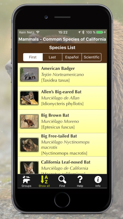 California Mammals – Guide to Common Species