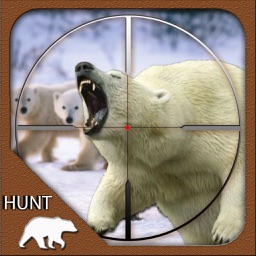 Hunt The Wild Bear  - 2017