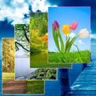 Nature Wallpapers y fondos de pantalla icon