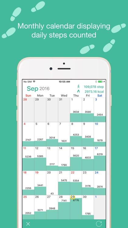 Maipo -Step Counter & Calendar